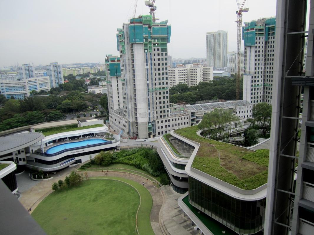Getting Settled Into Nus National University Of Singapore